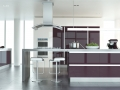 ultra gloss plum kitchen